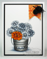 2013/08/05/ORANGE_SPLASH_by_Tammie_E.jpg