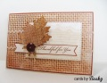 2013/08/16/thanksgiving_leaf_leaves_card_1_by_bpnaz.JPG