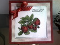 2013/08/18/Strawberries_for_Doreen_by_Precious_Kitty.JPG