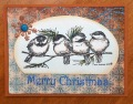 2013/08/27/Four_Bird_Christmas_Wish_by_Dockside.jpg