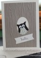 2013/08/30/Card_3_Owl_Hello_by_Robyn_Rasset.jpg