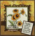 2014/08/13/stampendous_yellow_brown_daisy_copy_by_jennie_black.jpg