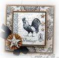 2015/01/18/Shabby_Rooster_by_labille3.jpg