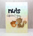 2015/06/19/Nuts_1_1_by_Clever_creations.png