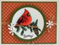 2015/10/03/Cardinal_Greetings_by_ClassyCards.jpg