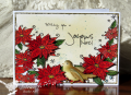 2015/10/09/birdonpoinsettiac22_by_Cook22.png