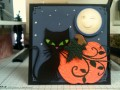 2015/10/27/Full_Moon_by_Precious_Kitty.JPG