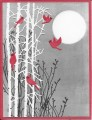 2015/12/10/cardinals_and_birches_by_marilynmac.jpg