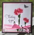 2016/02/07/Carnations-Thinking-of-You_by_kitchen_sink_stamps.jpg
