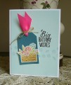 2016/02/10/amusestudio_grow_basketcase_birthdaygirl_birthdaycard_by_allamericanstampers.jpg