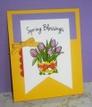 2016/03/16/Easter_Egg_Tulips_by_CardsbyMel.jpg