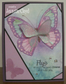 2016/05/13/repurposed_butterfly_4_by_Forest_Ranger.png