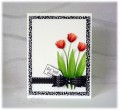 2016/05/30/flowers_2015_vol_22_1_Bows_-_Red_Tulips_card_cindy_gilfillan_by_frenziedstamper.jpg