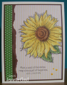 2016/06/01/may_swap_sunflower_2_by_Forest_Ranger.png