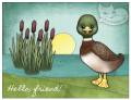 2016/06/04/Quackers1_watermark_by_melaniekay.png