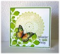 2016/08/08/doily_Turning_a_new_Leaf_PTI_butterfly_Hero_Arts_doily_stamp_smile_card_cindy_gilfillan_by_frenziedstamper.jpg