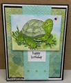 2016/08/23/SC607_annsforte3_Birthday_Turtle_by_annsforte3.jpg