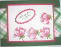 2016/11/12/Peony_Bouquet_on_Stamped_Plaid_by_Nan_Cee_s.jpg