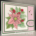 2016/12/20/pin_poinsettia_2_by_Forest_Ranger.png