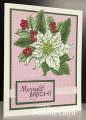 2016/12/22/poinsettia_and_pine_2_by_Forest_Ranger.png