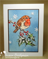 2016/12/23/bird2_by_susanbri.png