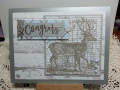 2017/01/06/Deer_Congrats_by_Dr_Sonja.png