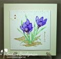 2017/03/17/crocus_by_susanbri.png