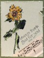 2017/04/08/IC592-Singing_Sunflower_by_BobbiesGirl.JPG