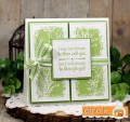 2017/04/11/Sheri_Gilson_GKD_Botanical_Blocks_Blog_Hop_by_PaperCrafty.jpg