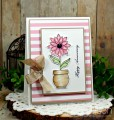 2017/04/25/Sheri_Gilson_SNSS_Pretty_Potted_Florals_Card1_by_PaperCrafty.jpg