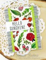 2017/05/24/Hello-Sunshine-Four_by_akeptlife.jpg
