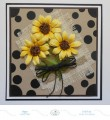 2017/06/10/gn-sunflower-with-black-dots_by_Selma.jpg