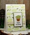 2017/06/13/Sheri_Gilson_CCC_Succulent_Reminder_by_PaperCrafty.jpg