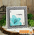 2017/06/30/Sheri_Gilson_GKD_DT_Lovely_Lillies_Release_Party_by_PaperCrafty.jpg