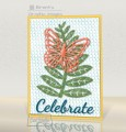 2017/07/20/CTS231_butterfly-rain-card_by_brentsCards.JPG