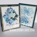 2017/07/25/asian-create-a-palette-rainbow-pad-product-spotlight-deb-valder-fun-stampers-journey-koi-dreams-fish-mirror-paper-humming-bird-0_by_djlab.PNG