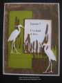 2017/08/09/egrets_by_jdmommy.png