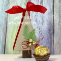 2017/11/28/christmas_tree_box-gift_giving-candy-box-holiday-cardmaking-fun_stampers_journey-fsjourney-fsj-deb_valder-1_by_djlab.PNG