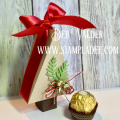 2017/11/28/christmas_tree_box-gift_giving-candy-box-holiday-cardmaking-fun_stampers_journey-fsjourney-fsj-deb_valder-2_by_djlab.PNG