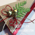2017/11/28/christmas_tree_box-gift_giving-candy-box-holiday-cardmaking-fun_stampers_journey-fsjourney-fsj-deb_valder-3_by_djlab.PNG