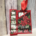 2017/11/30/Box_Candy_Card-GIft_Card-treat-box-holder-christmas-birthday-cardmaking-fun_stampers_journey-fsj-fsjourney-deb_valder-4_by_djlab.PNG