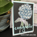 2018/01/16/black_magic-bloom_burst-Hydrangea-birthday-congratulations-fsj-fsjourney-fun_stampers_journey-deb-valder-1_by_djlab.PNG