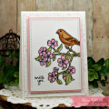 2018/03/26/Sheri_Gilson_SNSS_Birds_and_Blooms_Card_2_by_PaperCrafty.jpg