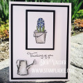 2018/05/08/Masking_Magic-Watercoloring-grow-friendship-sentimental-prints-Deb-Valder-FSJ-Fun_Stampers_Journey-1_by_djlab.JPG