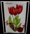 2018/06/19/DD9ABC18R_annsforte3_Red_Tulips_by_annsforte3.jpg