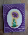 2018/06/23/Purple_Daisy_In_Bottle_by_CardsbyMel.jpg