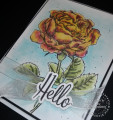2018/08/10/Fun_Stampers_Journey_Dear_Rose05_by_shoogendoorn.jpg