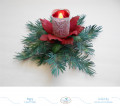 2018/08/26/Christmas-Flower-2_by_Selma.jpg
