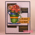 2019/01/17/Teacup_Roses_2_by_cathymac.jpg