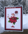 2019/12/07/Pamela-Poinsettia-Flower-Christmas-Holiday-Winter-Teaspoon_of_Fun-Deb-Valder-stampladee_by_djlab.PNG